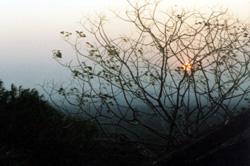 sonnenaufgang im tsavo