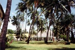Kikambala